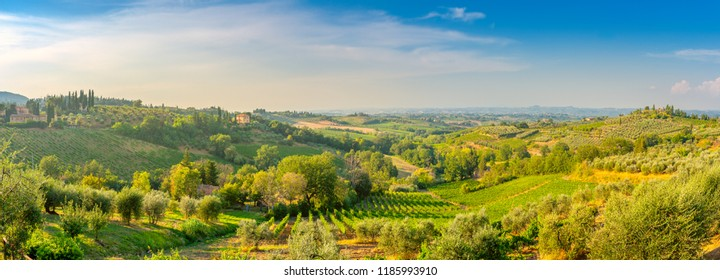 panorama of the Tuscan valley at sunset, many guest villas on the hills, Italy. Europe