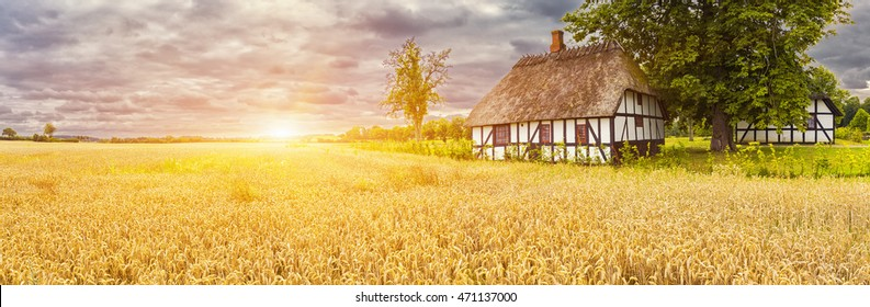 Panorama Of Typical Danish Picturesque old houses and yellow wheat field at Sunrise / Sunset in Kvaerndrup, Denmark