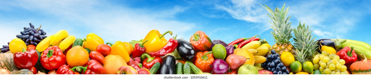 Panorama vegetables and fruits against bright blue sky. Copy space