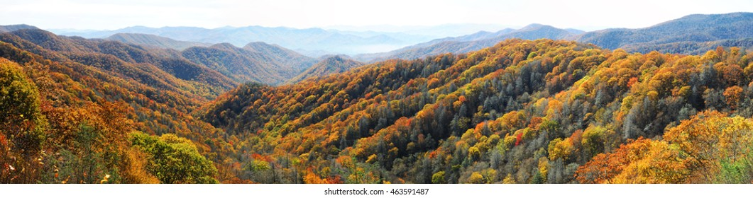 panorama view autumn mountain and colorful forest