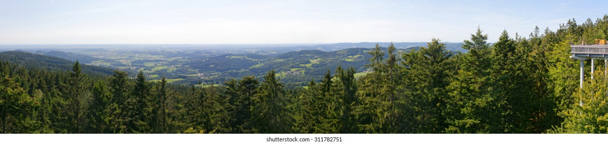 panorama view bavarian forrest germany
