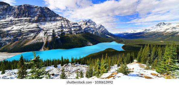 Panorama View from Bow Summit of Peyto lake in, Alberta, Canada.