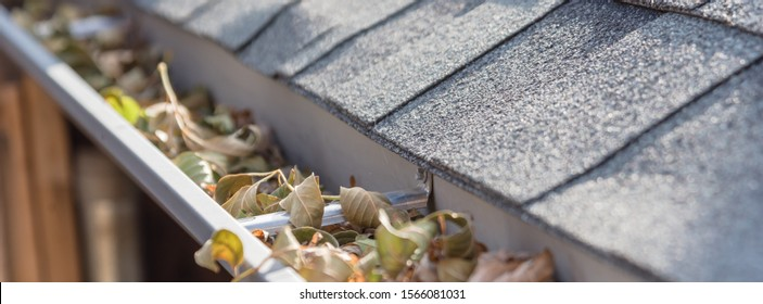 Panorama view clogged gutter near roof shingles of residential house full of dried leaves and dirty need to clean-up. Blocked drain pipe on rooftop. Gutter cleaning, home maintenance concept
