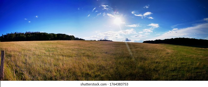 Panorama view of a cornfield in germany in summer with blue sky and sun lens flare effect