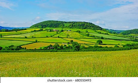 A panorama view of the farmland and coutryside in summer near Otterton, Devon, England, UK