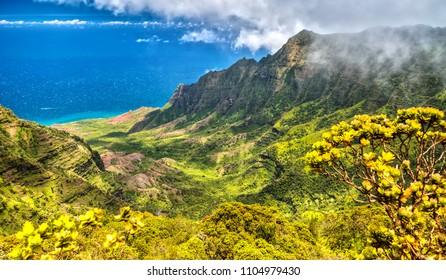 Panorama View over Kalalau Valley