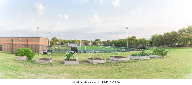 Panorama view row of raised bed garden with PVC pipe for cold frame support at elementary school near Dallas, Texas, America. School gardening football field stadium with running tracks