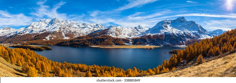 Panorama view of Sils lake and the swiss alps in Upper Engadine with golden trees  in autumn, Canton of Grisons, Switzerland.