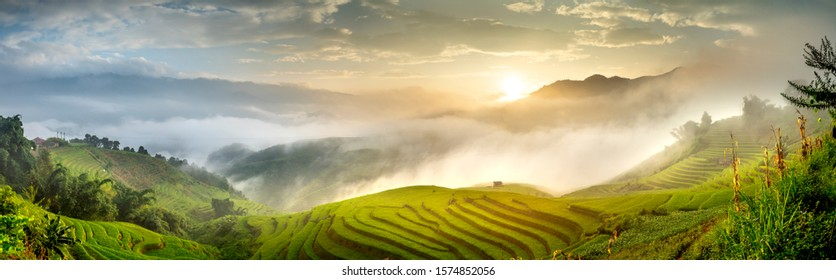 A Panorama view of terraced rice field in harvest season in Mu Cang Chai, northern of Vietnam