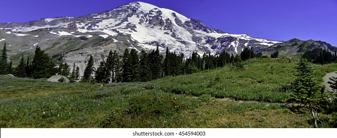 Panorama view of Top of the Mountain, Mt Rainier  National Park 1