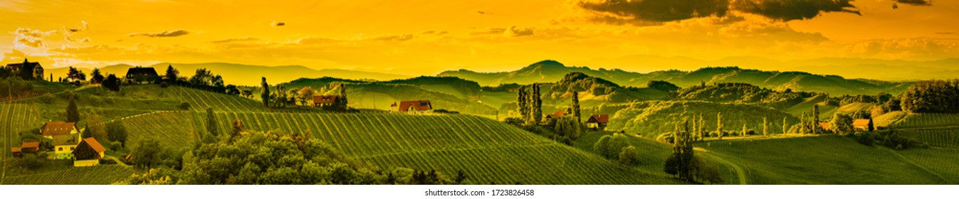 Panorama of vineyards hills in south Styria, Austria. Tuscany like place to visit. Landscape during spring sunset.
