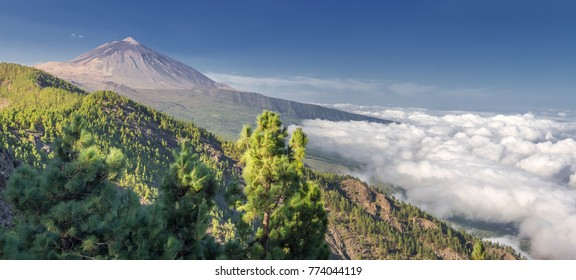 Panorama of the volcano Teide and Orotava Valley - view from Mirador de Chipeque (Tenerife, Canary Islands)