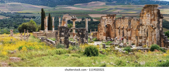 Panorama of Volubilis is a ruined Amazigh, then Roman city in Morocco near Mekne
