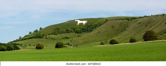 Panorama of Westbury White Horse. Hill figure created by exposing white chalk on the escarpment of Salisbury Plain in Wiltshire, UK