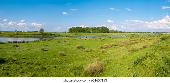 Panorama of wetland landscape of nature reserve Tiendgorzen, Haringvliet estuary near Nieuwendijk, South Holland, Netherlands