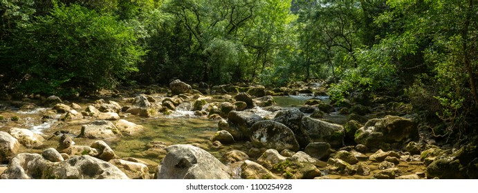 panorama of a wild river with its rocks and surrounded by lush vegetation