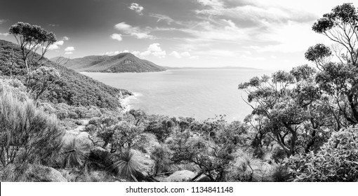 Panorama of Wilsons Promontory National Park, Victoria, Australia in black and white
