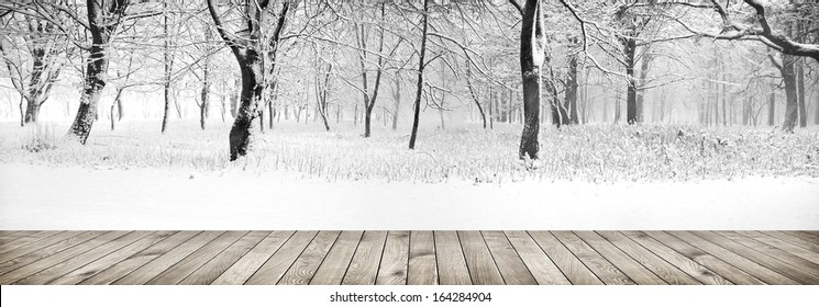 Panorama of winter forest with trees covered snow with wood planks floor