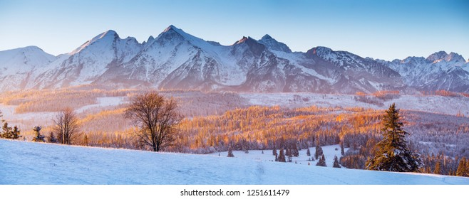 Panorama of winter Tatra mountains. Beautiful valley with forest on snowy hills background. Winter scenic background. Winter panoramic landscape.