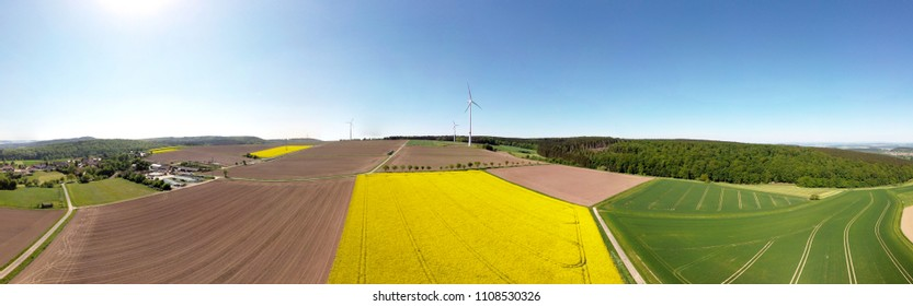 Panoramic aerial of blooming canola field in Germany