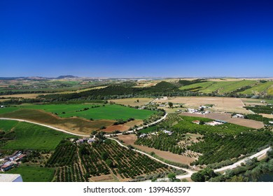 Panoramic aerial view from plateau of Ronda on endless rural plain with olive groves and crop fields under blue sky, Andalusia, Spain