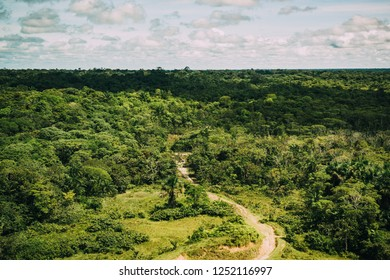 Panoramic in the Amazonas