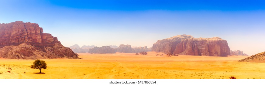 Panoramic Approach to Wadi Rum - Lonley Tree at Lawrence Spring