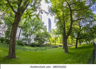 Panoramic of Central Park and Manhattan skyline, New York City, U.S.