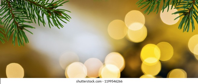 Panoramic Christmas background with detail of Christmas twig.