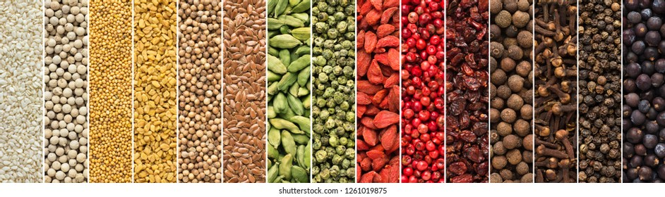 panoramic collage of spices and herbs isolated background. seasoning texture for food packaging design. collection of colorful flavoring, top view.