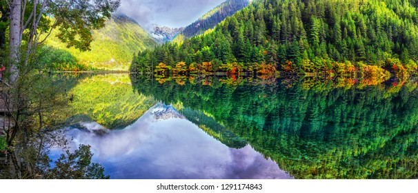 The panoramic colorful scenery of the mirror lake and forest at Jiuzhaigou national park, world heritage site located in Sichuan Province China