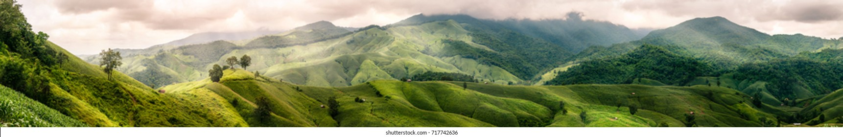Panoramic of corn farm mountain with little cottage in countryside. Nan, Thailand