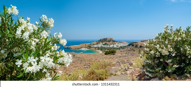 Panoramic, distant view at Lindos village with ruins of ancient Acropolis. View framed with flowers white Nerium Oleander in blossom. Island of Rhodes. Greece. Europe.