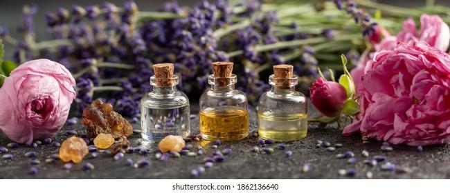 Panorama-Kopfteil von ätherischen Ölflaschen, Lavendel, Frankfurter Pfeifenblumen und Rosenblumen