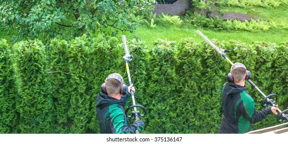 Panoramic image from cutting a hedge with a hedge trimmer motor.