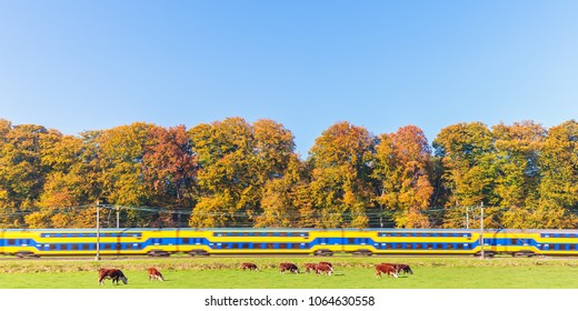Panoramic image of a Dutch train passing colorful autumn trees in Gelderland