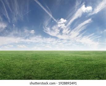 Panoramabild von grünem Grasfeld und bewölktem Himmel mit Kopienraum