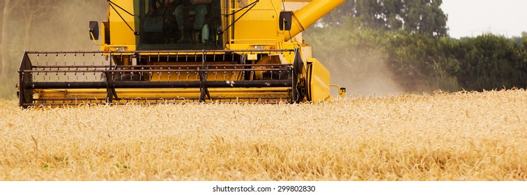 Panoramic image of a harvester on a wheat field, Holland