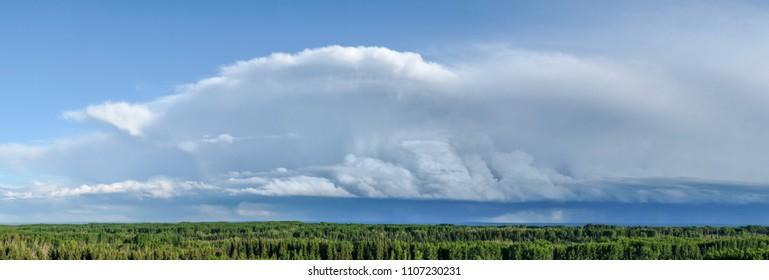 A panoramic image of a large developing thunderstorm over a forested landscape