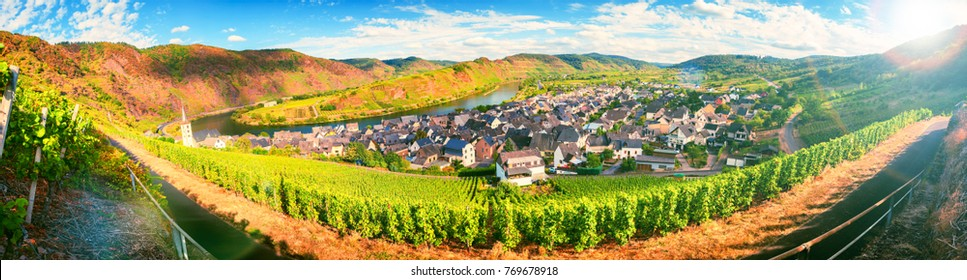 Panoramic landscape with autumn vineyards and small town. Mosel, Germany