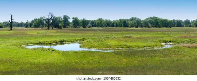 panoramic landscape with big wide meadow and little river