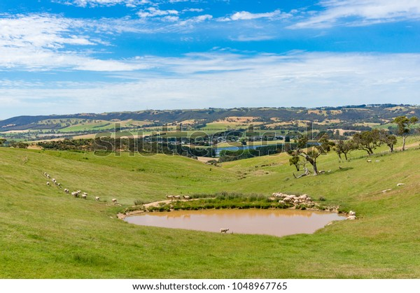 Panoramic landscape of countryside in South Australia