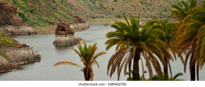 Panoramic landscape, dam with interior rock and palm trees in foreground, La sorrueda, Gran canaria