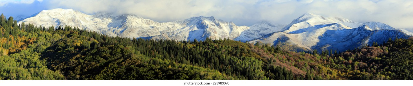Panoramic landscape with fresh snow in the Wasatch Mountains, Utah, USA.
