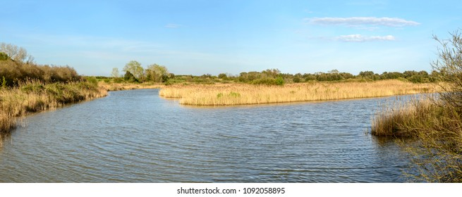 panoramic landscape  of lagoon water and soil, shot in bright spring sun light at nature oasis, Cannavie, Volano, Ferrara,  Italy