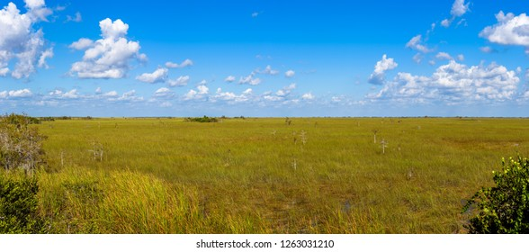 Panoramic Landscape on the prairie from Pa-Hay-Okee Lookout Tower, Everglades National Park, Florida.