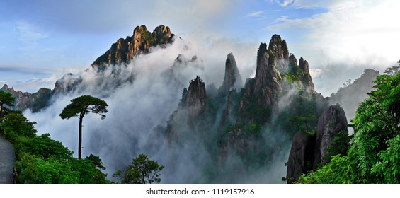 Panoramic Landscape of pine trees and rock mountain with blue sky