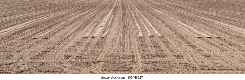 panoramic landscape of plowed empty field, brown cultivation ground