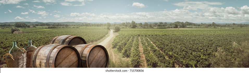 Panoramic landscape with vineyards, wine bottles and old wooden barrels. Countryside of France for your background or banner of Festival of young wine Beaujolais.