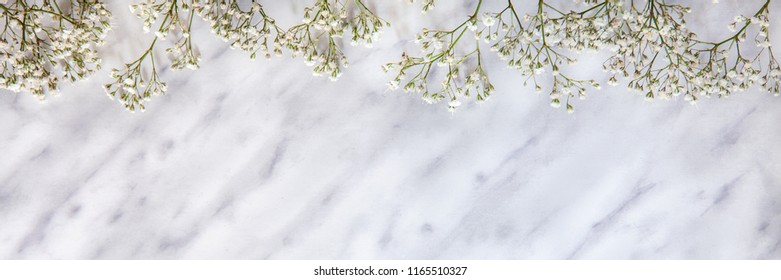 Panoramic marble blank copy space background with white field flowers at the top